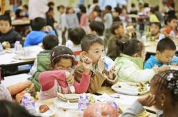 NY公立小学校の全給食がベジタリアンに