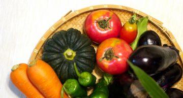 菜食と寿命