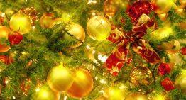 【イベント】クリスマス会!300人でヴィーガンブッフェと音楽ライブを楽しもう☆