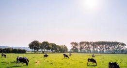 気候科学における畜産の影響度